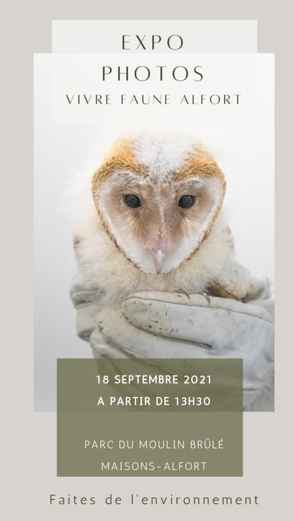 Immersion en photos au coeur de Faune Alfort, association pour la sauvegarde de la Faune Sauvage